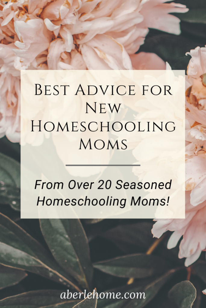 best advice for new homeschooling moms pin image