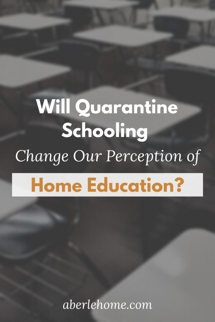 will quarantine schooling change our perception of home education pin image