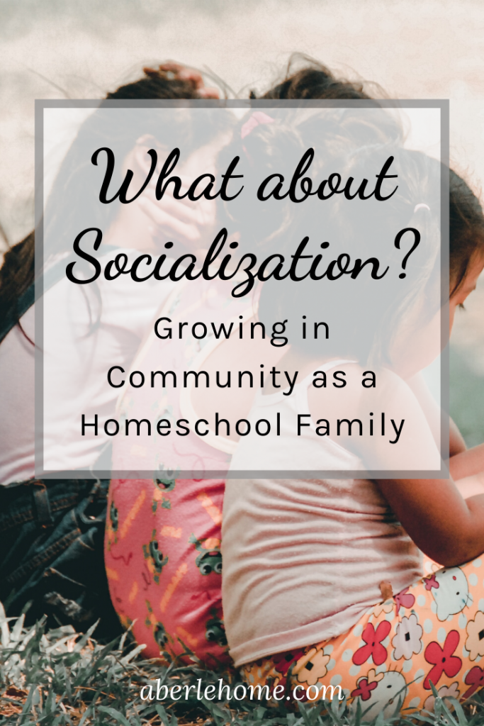 what about socialization Pinterest image