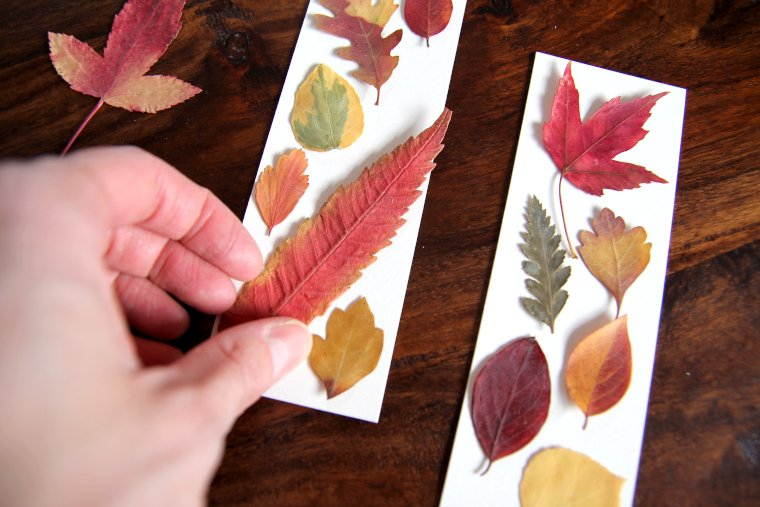 arrange leaves on bookmark