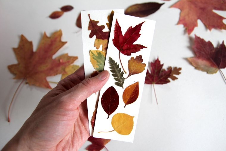 pressed-leaf-bookmarks-for-fall