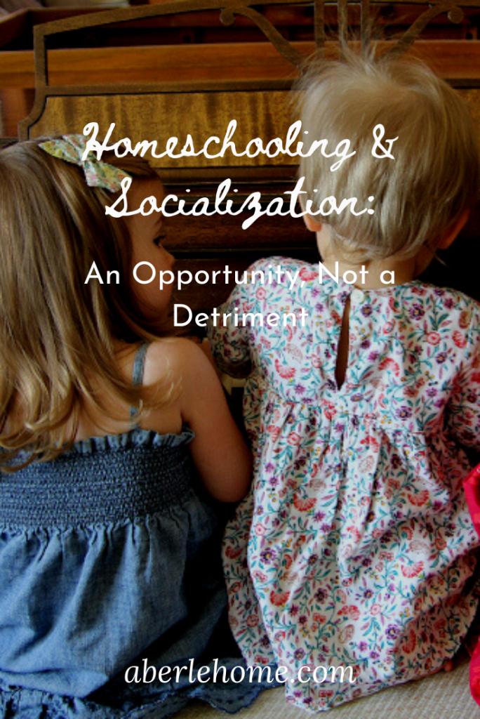 homeschooling and socialization Pinterest image