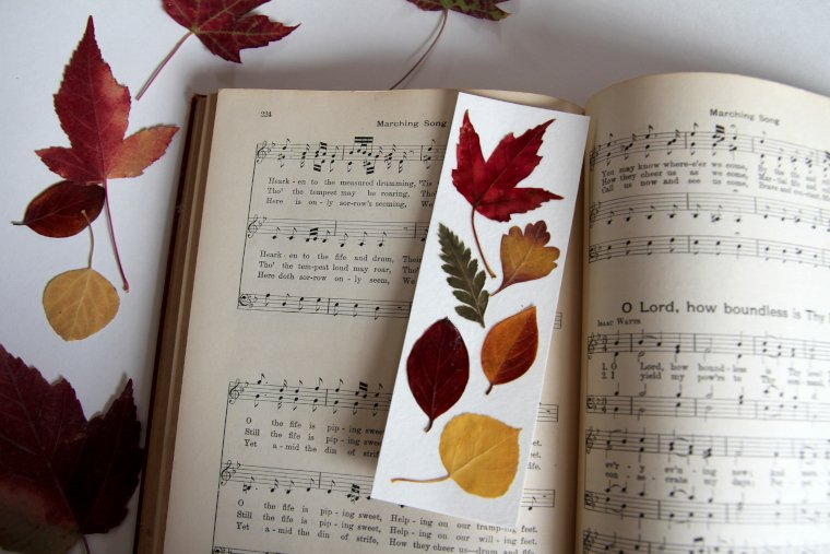 pressed leaf bookmark on music book