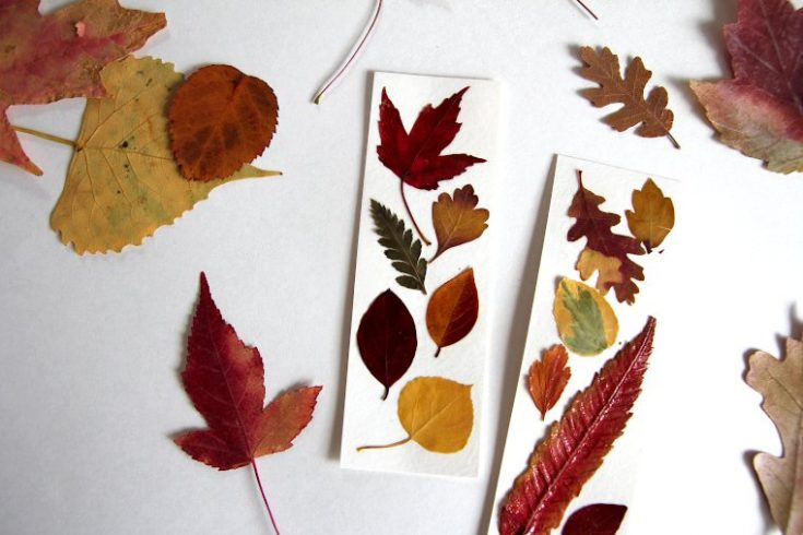 pressed leaf bookmarks for fall
