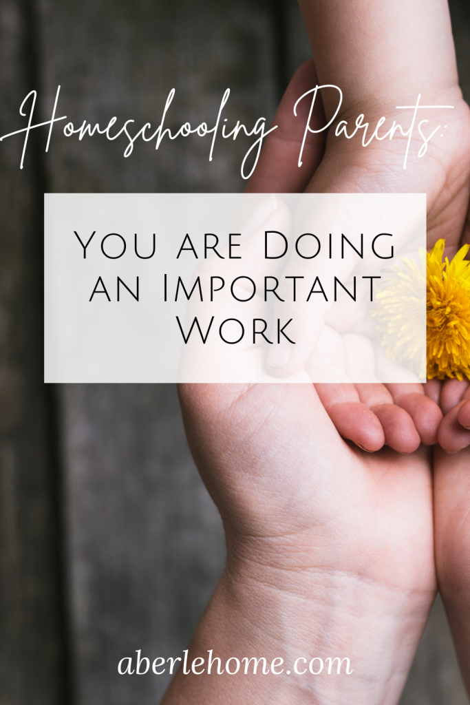 homeschooling parents: you are doing an important work Pinterest image