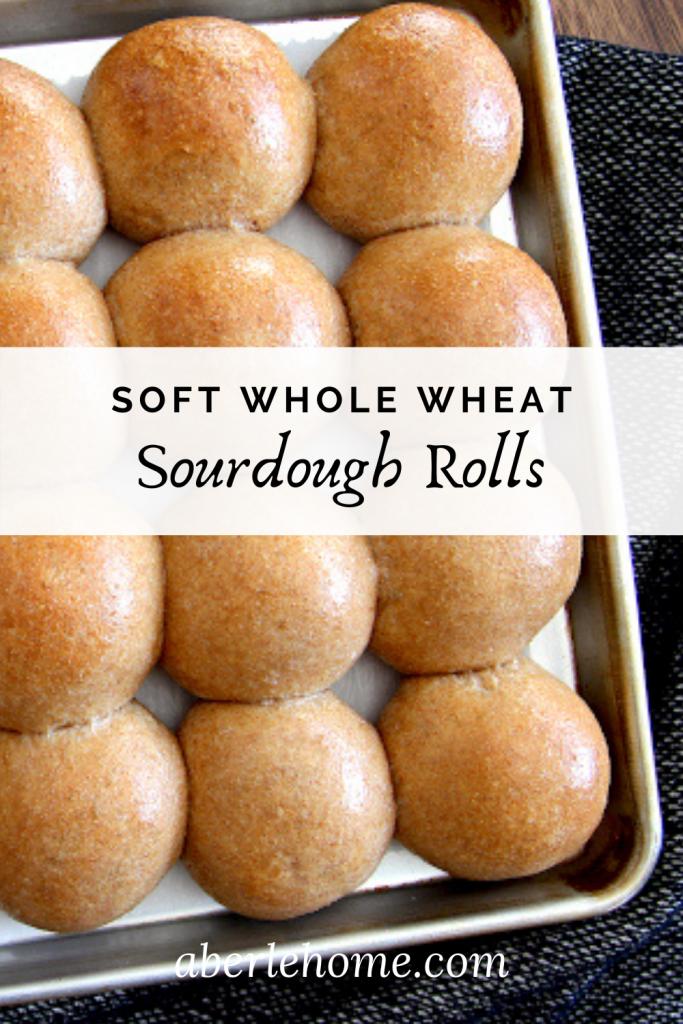 soft whole wheat sourdough rolls pinterest image