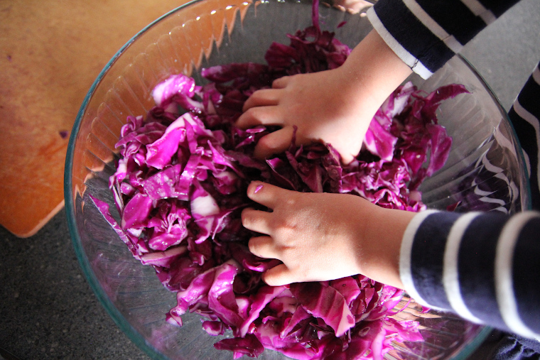 small hands massaging the red cabbage in a bowl