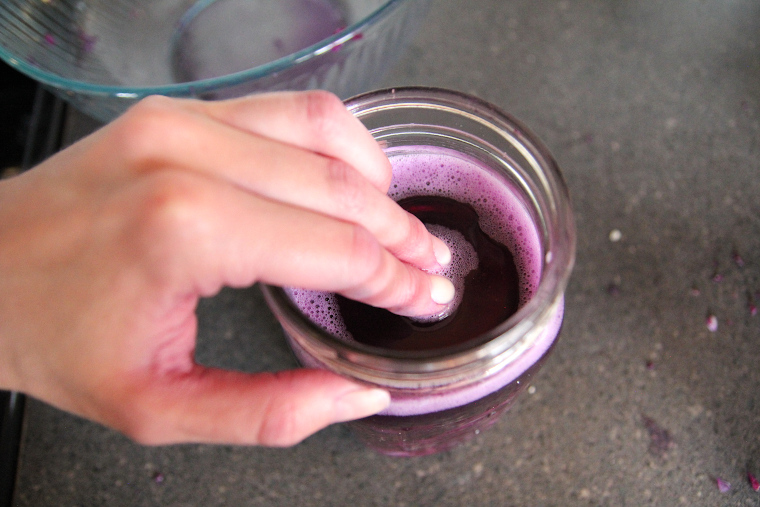 pressing the weight down to submerge red cabbage below the brine