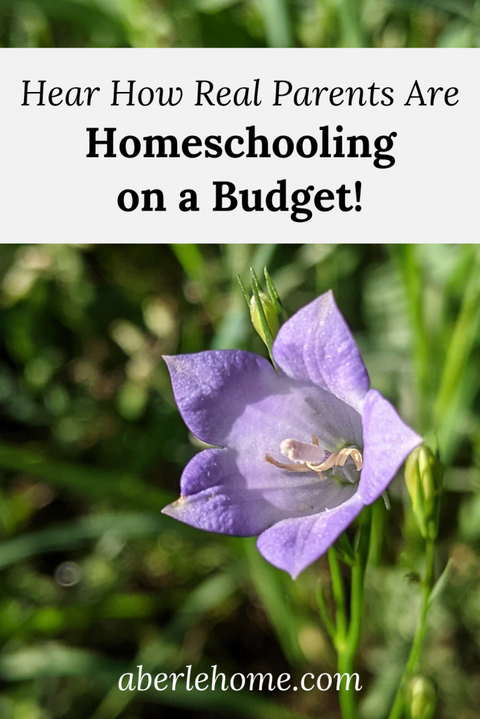 homeschooling on a budget pinterest graphic